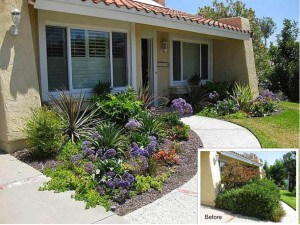Mission Viejo Entry Landscaping Update
