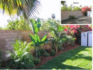 Laguna Hills Back Yard Makeover