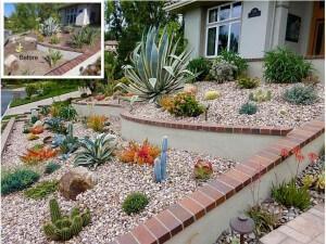 Anaheim Hills Succulent Slope