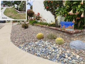 Costa Mesa Turf Removal Rebate Program