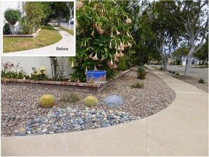 Costa Mesa Turf Removal Rebate Project