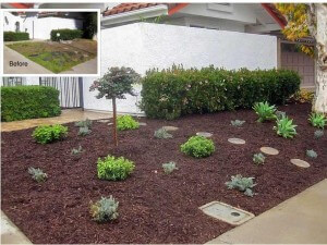 Laguna Niguel Front Yard Refurbish