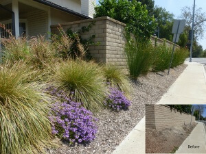 Mission Viejo side yard update